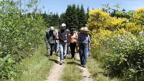walkinggroup